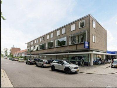 Rijnauwenstraat, Breda