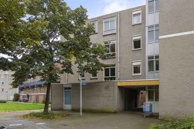 Kronenburgsingel 237, Arnhem