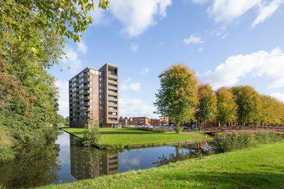 Lokkertsemolenweg 38, Hoogvliet Rotterdam