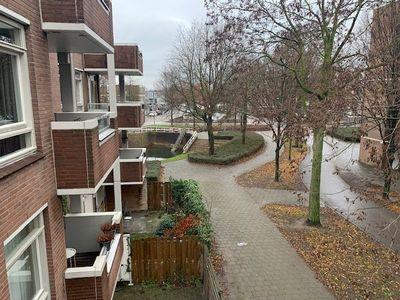 Statenkwartier, Den Bosch