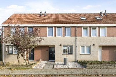 Grauwe Gans 62, Bergen Op Zoom