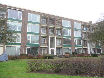 Orchislaan, Arnhem