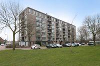 Neerstraat 169, 's-hertogenbosch