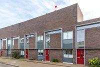 Flavus 43, Nijmegen