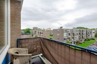 Middelrode 83, Rotterdam