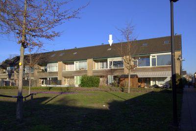 Joost van den Vondelstraat, Winterswijk