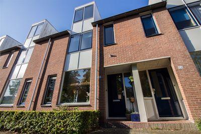 Ekster 55, Hoorn