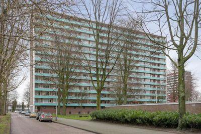 Langswater 804, Amsterdam