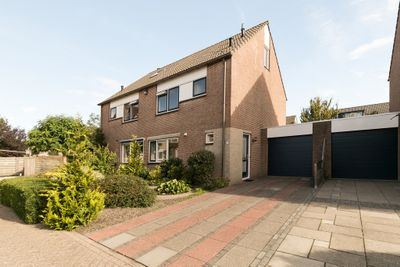 Plevier 80, Hoorn