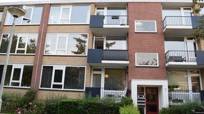 Groen van Prinstererlaan, Groningen