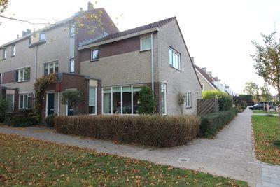 Molenaarserf, Houten