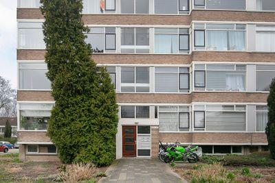 Nieuwenoord 253, Rotterdam