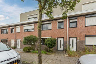 Gelaarsde Kat 105, Eindhoven