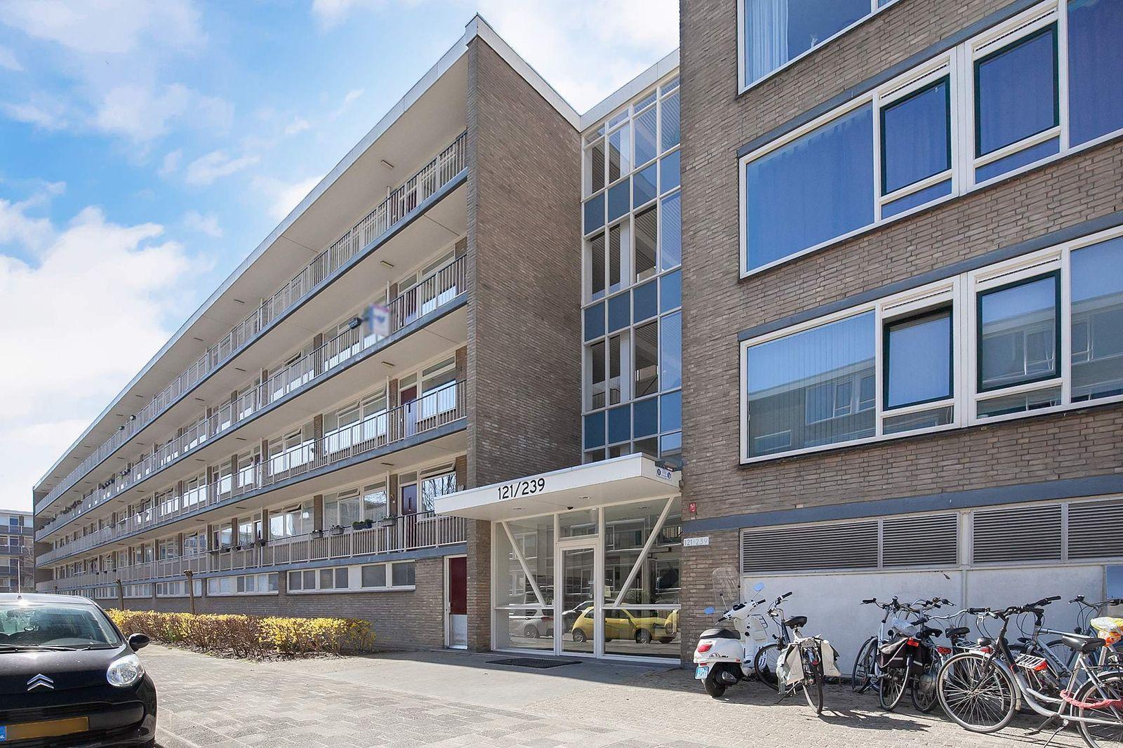 Schalkeroord 205, Rotterdam