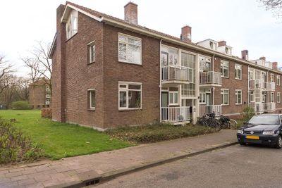 Ruys de Beerenbroucklaan, Amersfoort