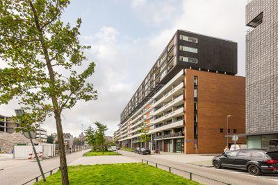 Gedempte Zalmhaven 825, Rotterdam