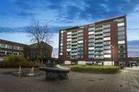 Mill Hillplein 51, Roosendaal