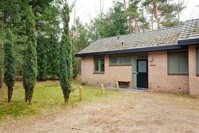 Grevenhout 21-053, Uddel