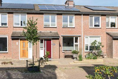 Lokeren 54, 's-Hertogenbosch