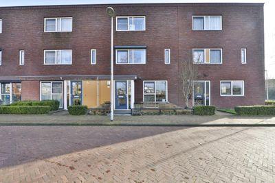 Citroenvlinder 42, Hoogeveen