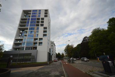 Hereweg, Groningen