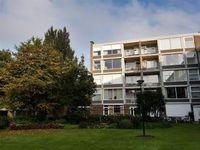 Beukenhorst 85, Driebergen-rijsenburg