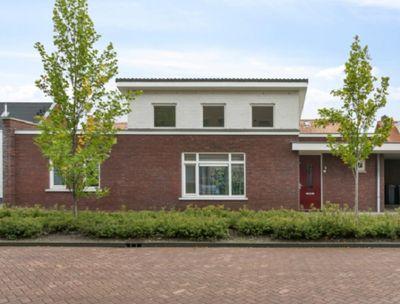 Jurriaen Andriessenstraat, Rijen