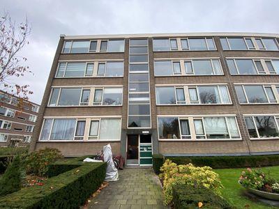 Bredenoord, Rotterdam