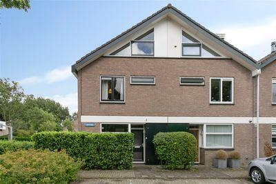 Ligusterbes 7, Leiden