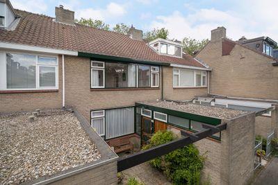 Leermos 37, Rotterdam