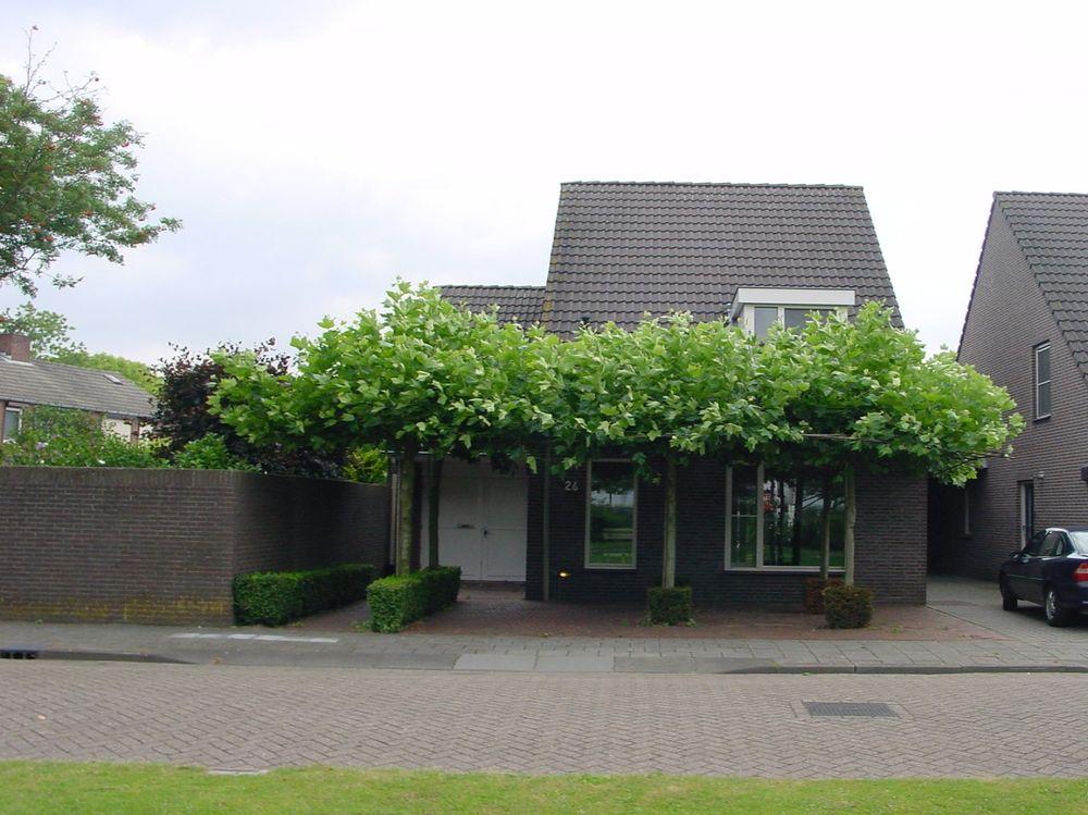 Begoniastraat 26, Veghel