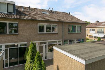 Winde 81, Kampen