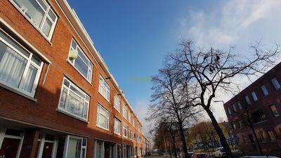 Huizen Huren Rotterdam : Huis huren in rotterdam bekijk huurwoningen