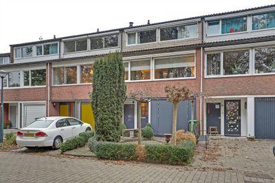Baljuw 82, Hoorn