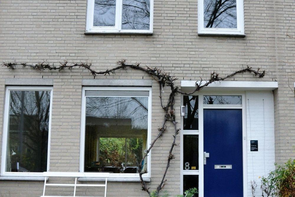 Hondiusdomein, Maastricht