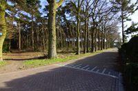 Bosweg 2280B, Putte