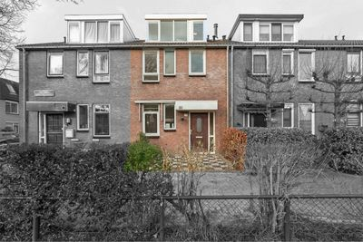Martinus Nijhoffplantsoen 29, Rotterdam