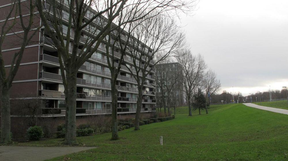 Kaneelhof 49, Hoogvliet Rotterdam