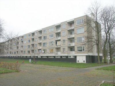 Langeplaat 75, Rozenburg