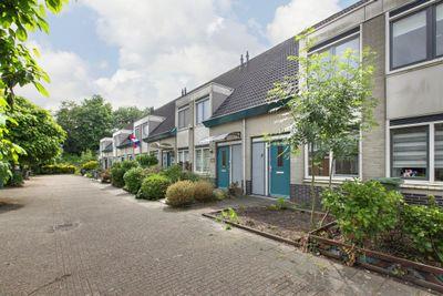 P. Lieftinckstraat 43, Amsterdam