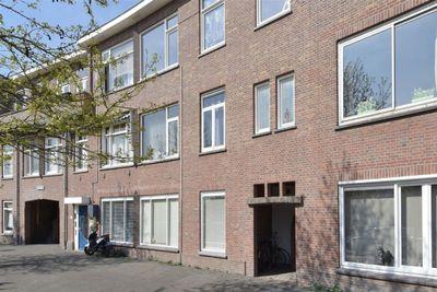 Mient, Den Haag