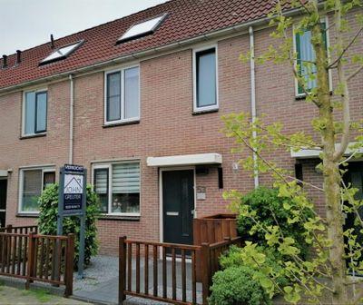 Cypres 53, Hoorn