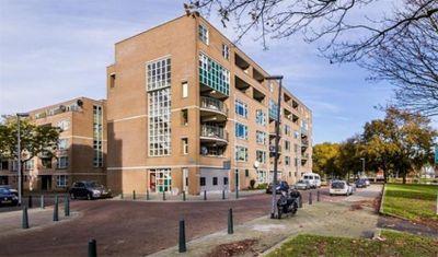 Schapendreef, Rotterdam
