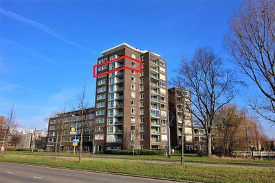 Hargplein 183, Schiedam