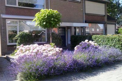 Nieuwstraat 42, Lage Zwaluwe