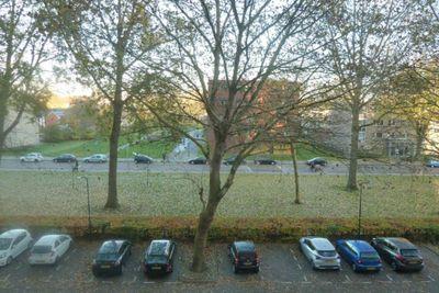 Engelandlaan, Haarlem