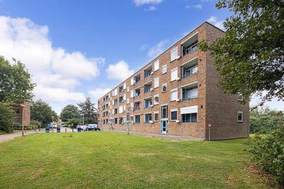 Pieter de Hooghstraat 31-C, Spijkenisse