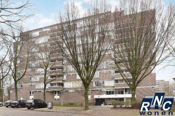 Maalakker, Eindhoven