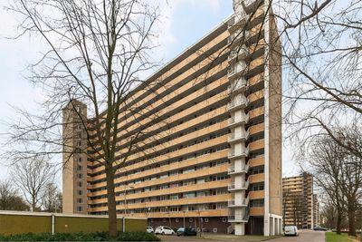 Langswater 499, Amsterdam