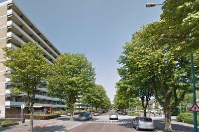 Steenvoordelaan, Rijswijk